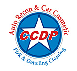 CCDP PDR